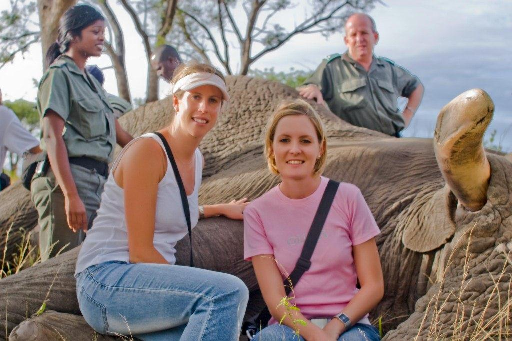 a-cuddle-with-a-sedated-sleeping-giant-kruger-national-park