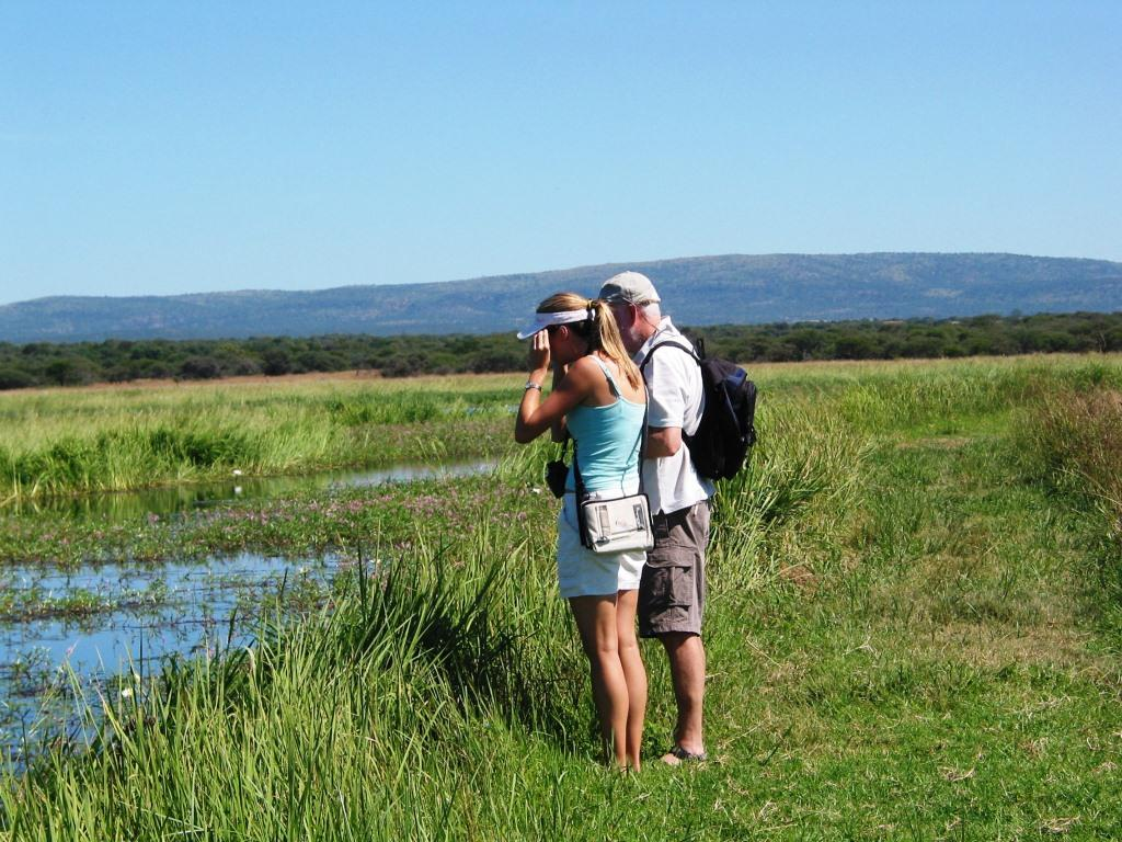 bird-watching-in-nylsvlei