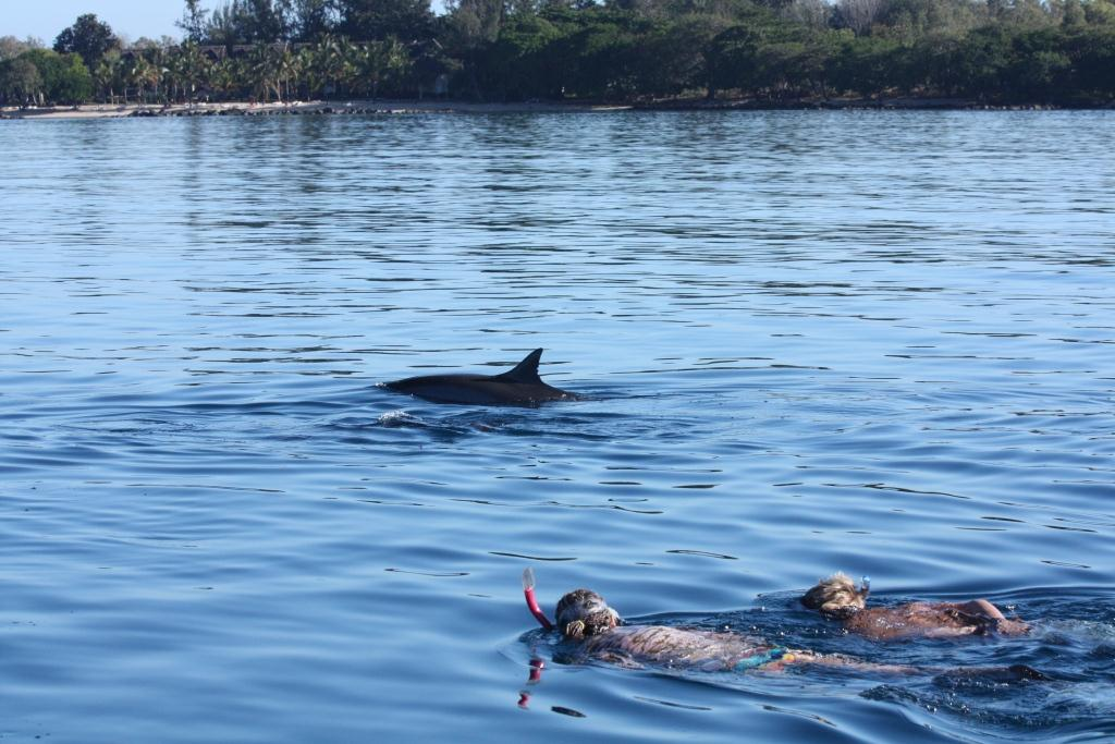 swimming-with-spinner-dolphins-pink-snorkel