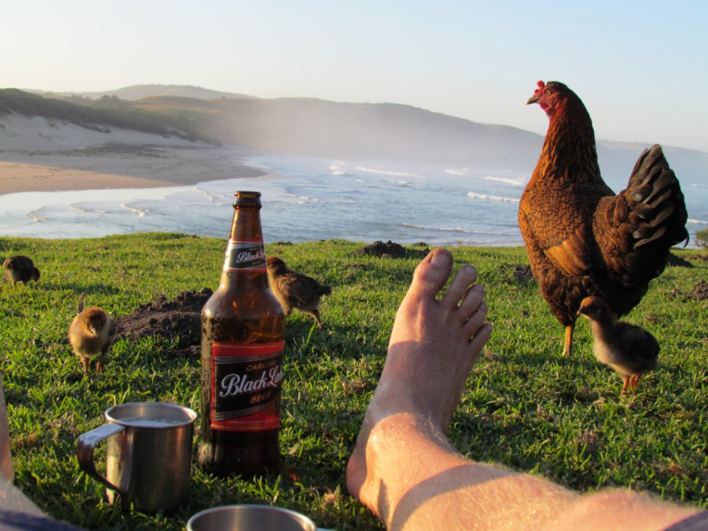 Tin cups and chickens, a typical wild coast experience