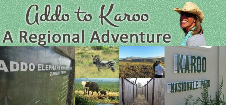 Addo to Karooo