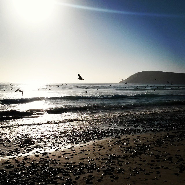 Magic mornings on Robberg Beach. Summer is here! #plettitsafeeling #gardenroute
