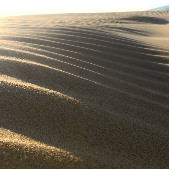 There is nothing more beautiful than a pristine and undisturbed sand dune. Pattern perfect ripples. The sunlight was still new, the beach deserted.  #EasternCape #SunshineCoast #beach #sand #sunlight #morninglight #dunes #followme #patternsinnature