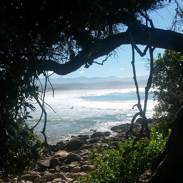 Through the forest window emerges a view to ignite happiness.  #plettitsafeeling #Plett #gardenroute #beaches #sun #surfer #view #ocean #forest #lookout #seaview #travelstoke