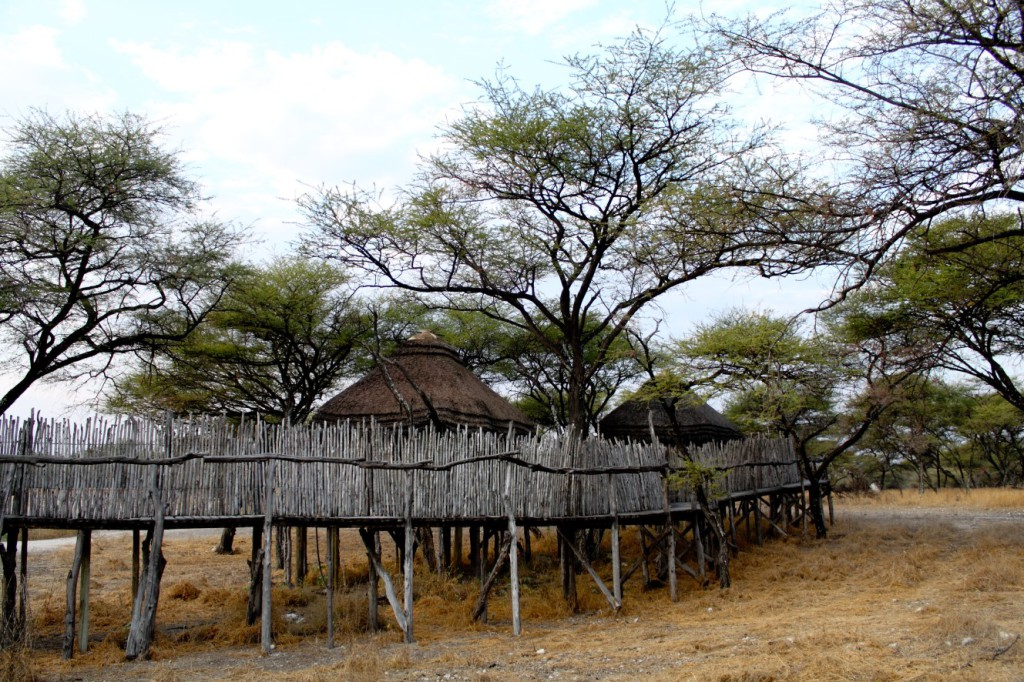 Onguma Game Reserve Lodges