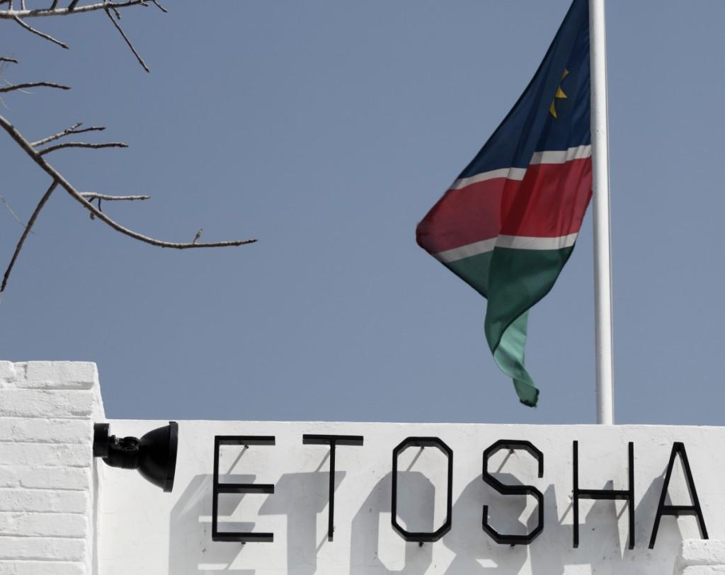etosha-national-park4