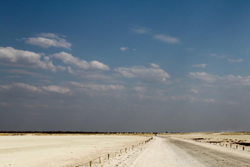 etosha-national-park12