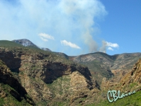 Fires in the mountains
