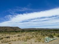 Karoo landscapes